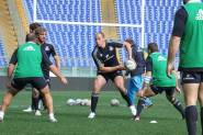 Captain's run fasi di gioco, Sergio Parisse